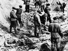 Раскопки на месте расстрела поляков в Катыни в 1943 году. Фото из архива ©AFP