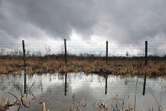 Забор тридцатикилометровой зоны на стороне Белоруссии. Фото: Василий Федосенко / Reuters