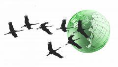 Общероссийская общественная организация «Социально-экологический союз»