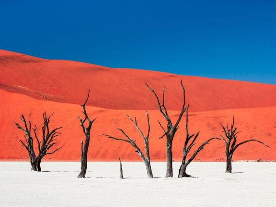 Остров тишины и тепла, пустыня Намиб, Африка
